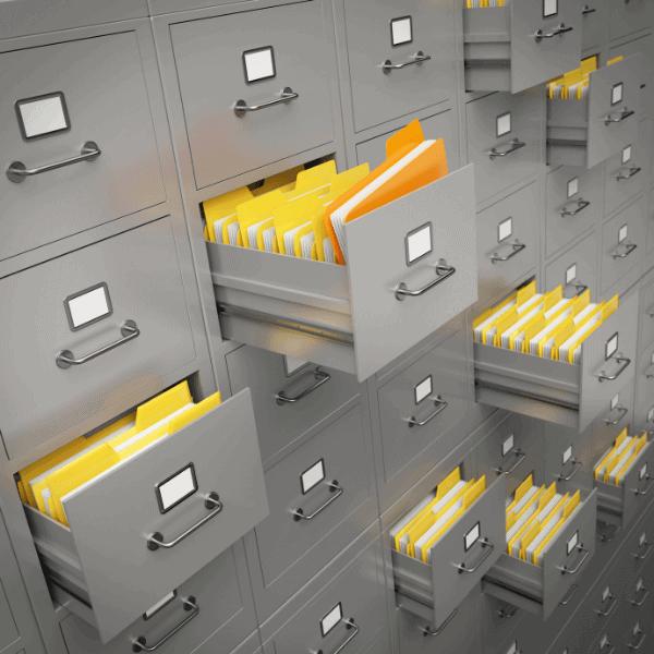 Organized files dissemination.info